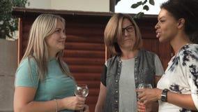 Mujeres que hablan en partido de la familia metrajes