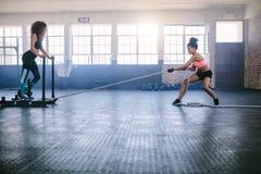 Mujeres que hacen entrenamiento físico intenso en el gimnasio fotografía de archivo libre de regalías