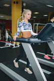 Mujeres que hacen los ejercicios cardiios, corriendo en las ruedas de ardilla en el gimnasio Imagen de archivo