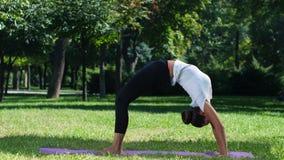 Mujeres que practican yoga en el fondo del parque almacen de video