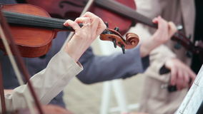 Mujeres que tocan los instrumentos atados violín, violoncelo metrajes