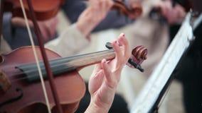 Mujeres que tocan los instrumentos atados violín, violoncelo almacen de metraje de vídeo