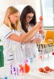 Mujeres que trabajan en laboratorio químico Fotos de archivo