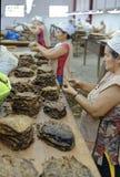 Mujeres que trabajan en una fábrica del cigarro Fotos de archivo libres de regalías