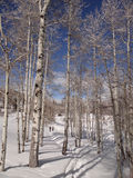 Mujeres snowshoeing Foto de archivo libre de regalías
