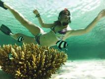 Mujeres subacuáticas Imágenes de archivo libres de regalías