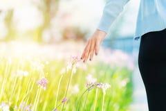 Mujeres y flores en el campo las mujeres dan el tacto de la flor púrpura con el espacio de la copia Fotografía de archivo