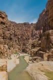 峡谷旱谷mujib约旦 图库摄影