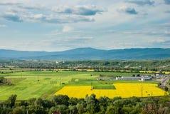Mukacheve, Ukraine - 8. Mai 2015: Landwirtschaftliches Feld stockfotos