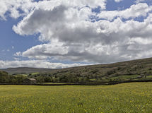 Muker meadows big sky Royalty Free Stock Photo