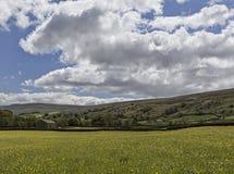 Muker meadows big sky Royalty Free Stock Photo