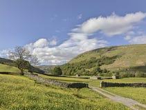 Muker meadows blue sky Royalty Free Stock Image