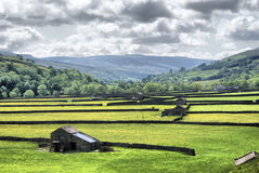 Muker Meadows - The Dales Royalty Free Stock Images