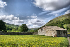 Muker Meadows - The Dales royalty free stock photography