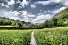 Muker Meadows ~ The Dales Royalty Free Stock Photography