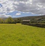 Muker meadows Royalty Free Stock Photos