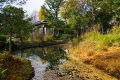 Mukojima-Hyakkaen庭院在秋天在东京 免版税库存图片