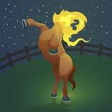 Mula sem, przeklinająca kobieta (Bezgłowy muł) Fotografia Stock