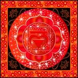 Muladhara chakra 免版税库存照片
