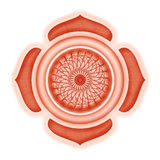 Muladhara Chakra isolated Royalty Free Stock Photo