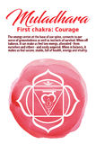 Muladhara Chakra vector illustration Stock Image