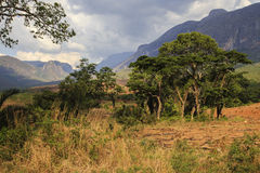 Mulanje Massif. The Mulanje Massif, also known as Mount Mulanje, is a large monadnock in southern Malawi only 65 km east of Blantyre, rising sharply from the stock image