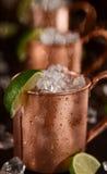 Mulas frías de Moscú - Ginger Beer, cal y vodka imagenes de archivo