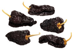 Mulato-dried Ancho Poblano chiles, πορείες Στοκ εικόνες με δικαίωμα ελεύθερης χρήσης