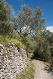 Mulattiera, Casoli, Tuscany, Italy, July 2009. Mule Track near a small Tuscan Town Royalty Free Stock Photos