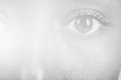 Mulatto eye. Sunny macro photo of a mulatto female eye Stock Photo