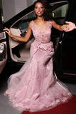 Mulatto woman wears luxurious dress,arrived on red carpet event. Fashion photo of gorgeous mulatto woman with long dark hair wears luxurious dress,arrived on red Stock Photo
