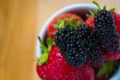 Mulberies sulle fragole superiori Fotografie Stock Libere da Diritti