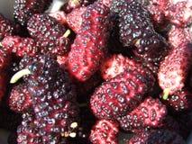 Mulberries Stock Photos