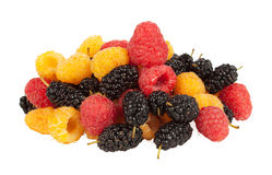 Mulberries Royalty Free Stock Images