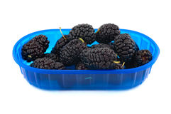 Mulberries royalty free stock photography