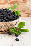 Mulberries in a basket. Fresh black mulberries in a basket. Shallow dof stock image