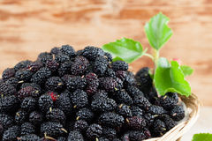 Mulberries in a basket. Fresh black mulberries in a basket. Shallow dof Royalty Free Stock Photography