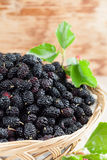 Mulberries in a basket. Fresh black mulberries in a basket. Shallow dof Stock Photos