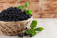 Mulberries in a basket. Fresh black mulberries in a basket. Shallow dof royalty free stock image