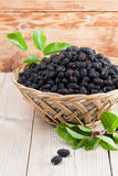 Mulberries in a basket. Fresh black mulberries in a basket. Shallow dof Stock Photography