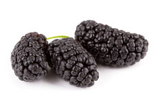 Mulberries Royalty Free Stock Image
