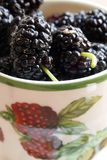 Mulberries in a cup. Mulberries in a ceramic cup , decorated with raspberries paintings Royalty Free Stock Images
