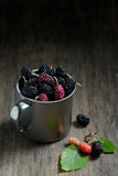Mulberries Royalty Free Stock Photos
