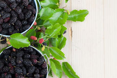Mulberries in small buckets. Fresh black mulberries in a basket. Shallow dof Stock Photos