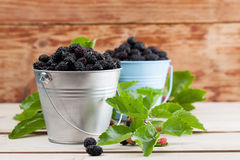 Mulberries in small buckets. Fresh black mulberries in a basket. Shallow dof Royalty Free Stock Photo