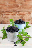 Mulberries in small buckets. Fresh black mulberries in a basket. Shallow dof royalty free stock images