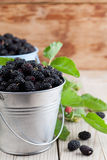 Mulberries in small buckets. Fresh black mulberries in a small buckets. Shallow dof Royalty Free Stock Photos