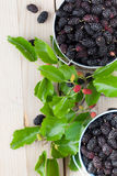 Mulberries in small buckets. Fresh black mulberries in a small buckets. Shallow dof Stock Images