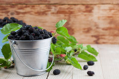 Mulberries in small buckets. Fresh black mulberries in a small buckets. Shallow dof stock photos