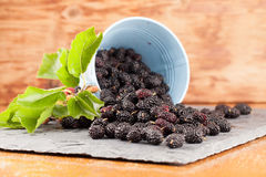 Mulberries split on a slate board. Black mulberries spilt on a slate board. Shallow dof royalty free stock images